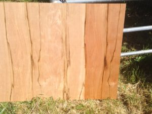 sparta wood grain